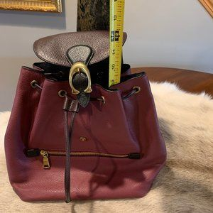 Coach Bags - Coach Evie Backpack In Colorblock Leather #76534